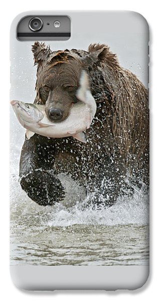 Brown Bear With Salmon Catch IPhone 6 Plus Case by Gary Langley