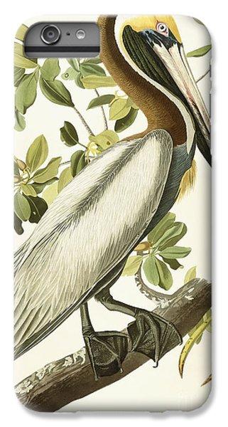 Brown Pelican IPhone 6 Plus Case by John James Audubon