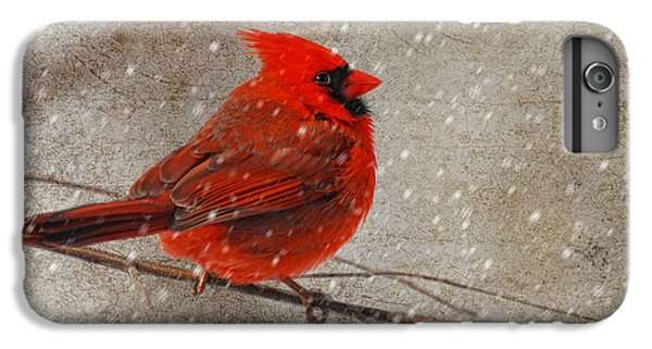 Cardinal In Snow IPhone 6 Plus Case by Lois Bryan