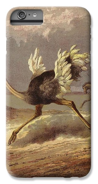 Chasing The Ostrich IPhone 6 Plus Case by English School