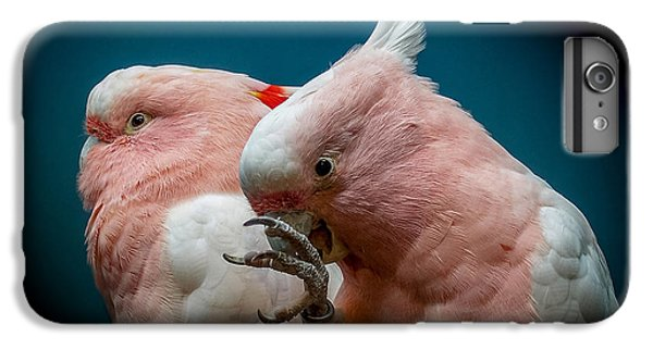 Cockatoos IPhone 6 Plus Case by Ernie Echols