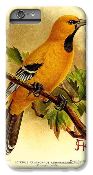 Curacao Oriole IPhone 6 Plus Case by J G Keulemans