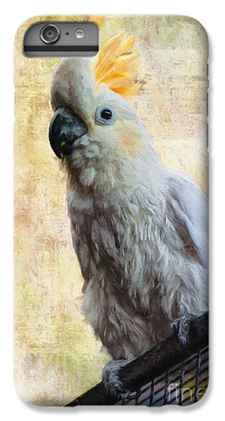 Elegant Lady IPhone 6 Plus Case by Lois Bryan