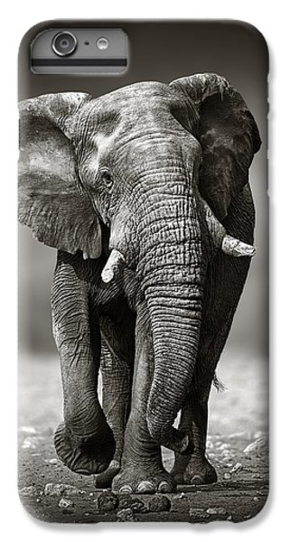 Elephant Approach From The Front IPhone 6 Plus Case by Johan Swanepoel