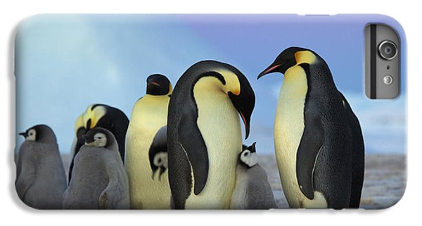 Emperor Penguin Parents And Chick IPhone 6 Plus Case by Frederique Olivier