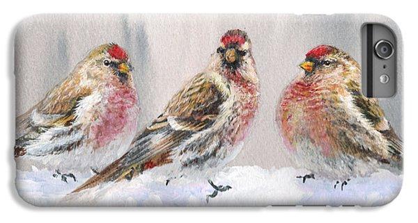 Snowy Birds - Eyeing The Feeder 2 Alaskan Redpolls In Winter Scene IPhone 6 Plus Case by Karen Whitworth