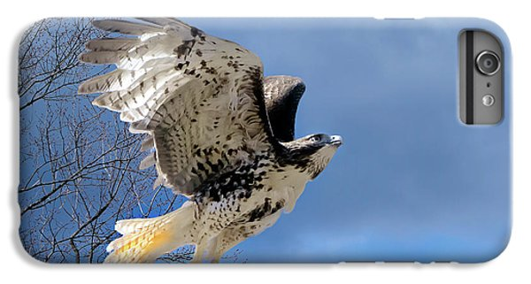 Flight Of The Red Tail IPhone 6 Plus Case by Bill Wakeley