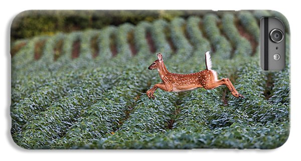 Flight Of The White-tailed Deer IPhone 6 Plus Case by Everet Regal