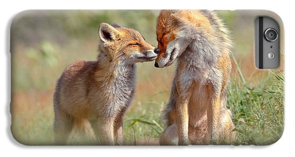 Fox Felicity - Mother And Fox Kit Showing Love And Affection IPhone 6 Plus Case by Roeselien Raimond