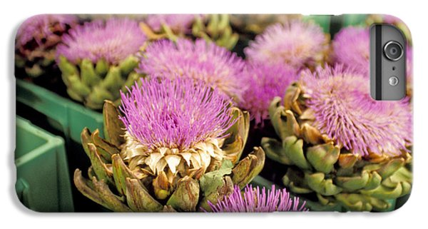 Germany Aachen Munsterplatz Artichoke Flowers IPhone 6 Plus Case by Anonymous