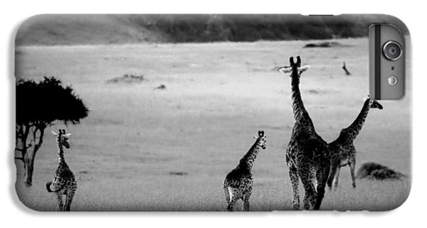 Giraffe In Black And White IPhone 6 Plus Case by Sebastian Musial