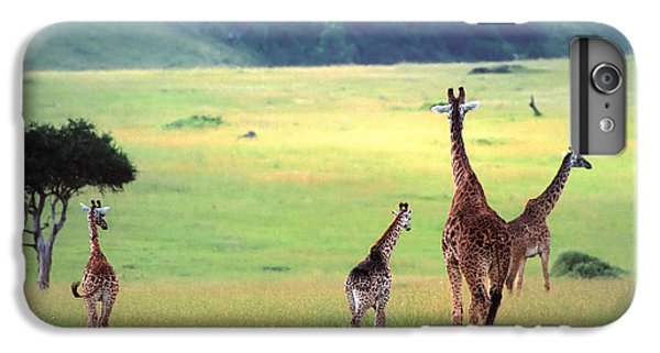Giraffe IPhone 6 Plus Case by Sebastian Musial