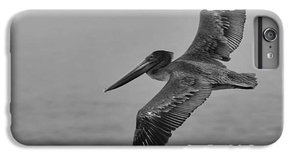 Gliding Pelican In Black And White IPhone 6 Plus Case by Sebastian Musial