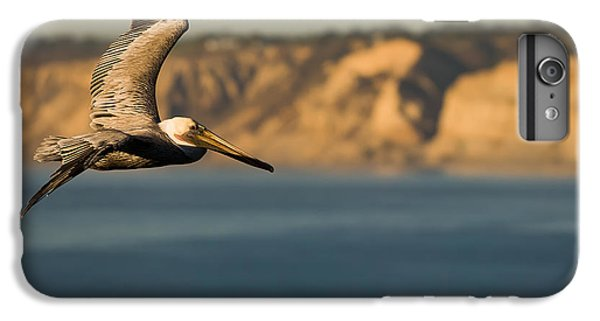 Gliding Pelican IPhone 6 Plus Case by Sebastian Musial