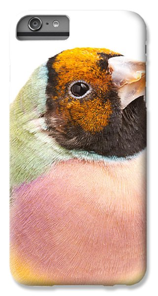 Gouldian Finch Erythrura Gouldiae IPhone 6 Plus Case by David Kenny