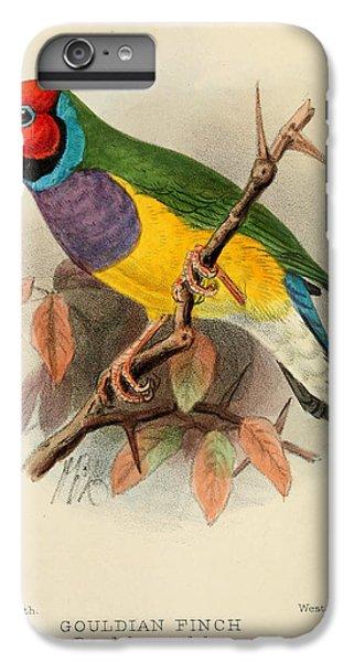 Gouldian Finch IPhone 6 Plus Case by J G Keulemans
