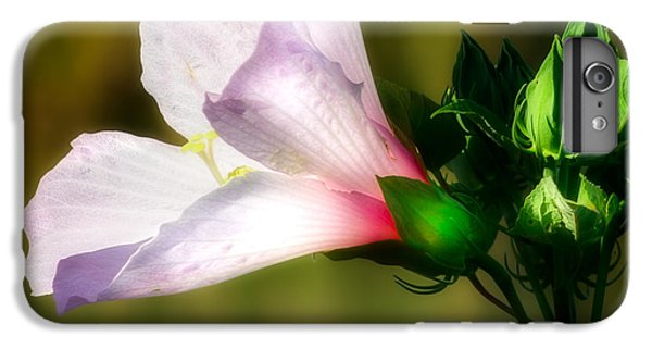 Grasshopper And Flower IPhone 6 Plus Case by Mark Andrew Thomas