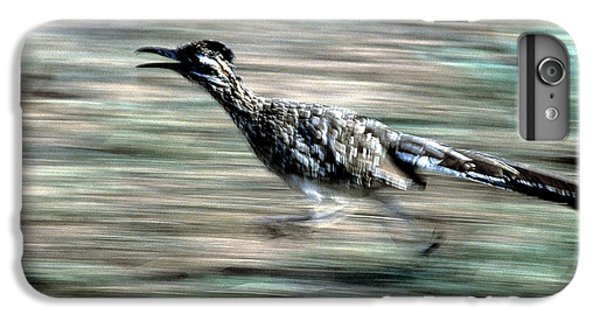 Greater Roadrunner IPhone 6 Plus Case by Tierbild Okapia