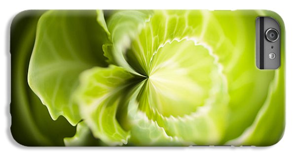 Green Cabbage Orb IPhone 6 Plus Case by Anne Gilbert