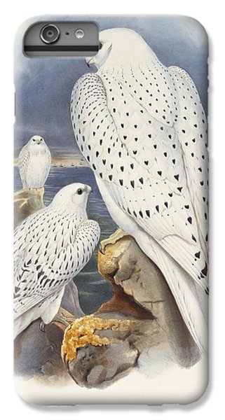 Greenland Falcon IPhone 6 Plus Case by John Gould