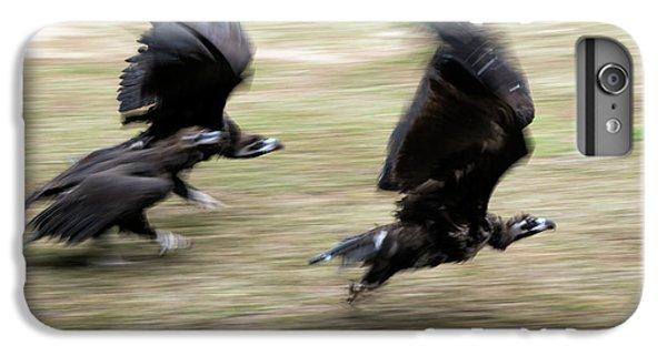 Griffon Vultures Taking Off IPhone 6 Plus Case by Pan Xunbin