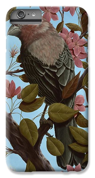 House Finch IPhone 6 Plus Case by Rick Bainbridge