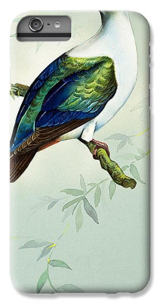 Imperial Fruit Pigeon IPhone 6 Plus Case by Bert Illoss