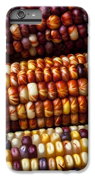 Indian Corn Harvest Time IPhone 6 Plus Case by Garry Gay