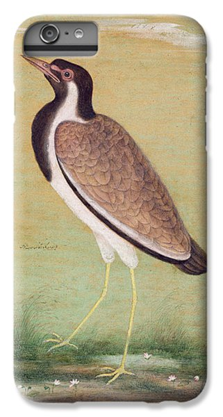 Indian Lapwing IPhone 6 Plus Case by Mansur