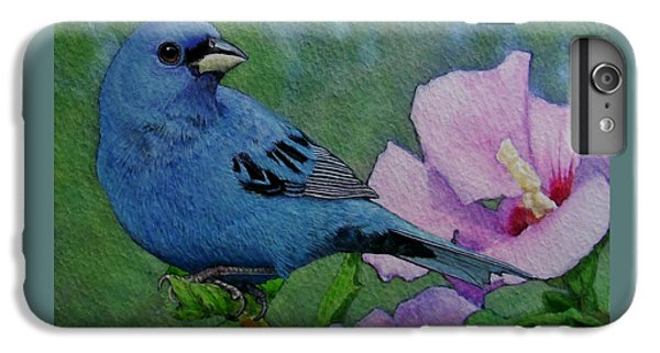Indigo Bunting No 1 IPhone 6 Plus Case by Ken Everett