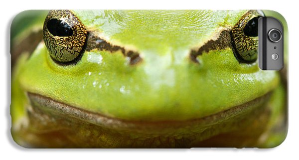 It's Not Easy Being Green _ Tree Frog Portrait IPhone 6 Plus Case by Roeselien Raimond