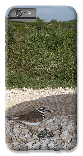 Killdeer Defending Nest IPhone 6 Plus Case by Gregory G. Dimijian