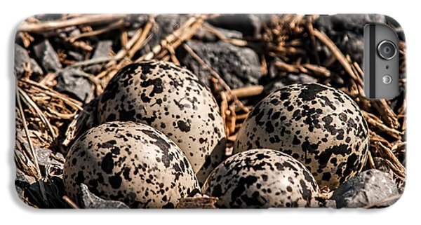 Killdeer Nest IPhone 6 Plus Case by Lara Ellis