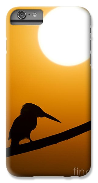 Kingfisher Sunset Silhouette IPhone 6 Plus Case by Tim Gainey