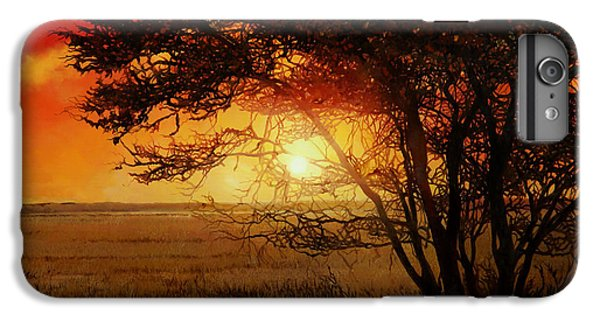 La Savana Al Tramonto IPhone 6 Plus Case by Guido Borelli