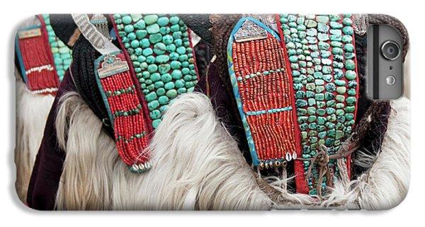 Ladakh, India Married Ladakhi Women IPhone 6 Plus Case by Jaina Mishra