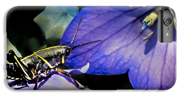 Contemplation Of A Pistil IPhone 6 Plus Case by Karen Wiles