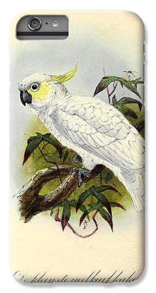 Lesser Cockatoo IPhone 6 Plus Case by J G Keulemans