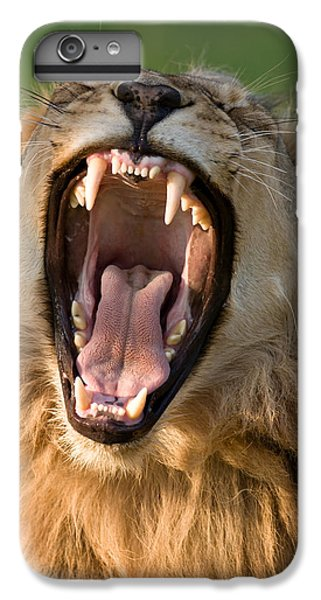 Lion IPhone 6 Plus Case by Johan Swanepoel