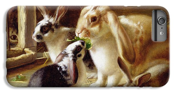 Long-eared Rabbits In A Cage Watched By A Cat IPhone 6 Plus Case by Horatio Henry Couldery