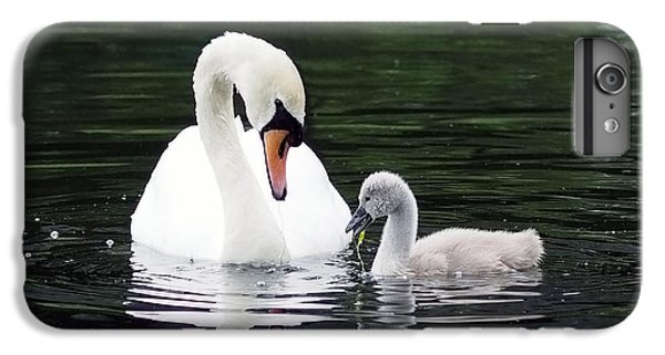Lunchtime For Swan And Cygnet IPhone 6 Plus Case by Rona Black