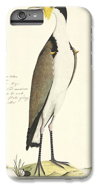 Masked Lapwing, 18th Century IPhone 6 Plus Case by Natural History Museum, London