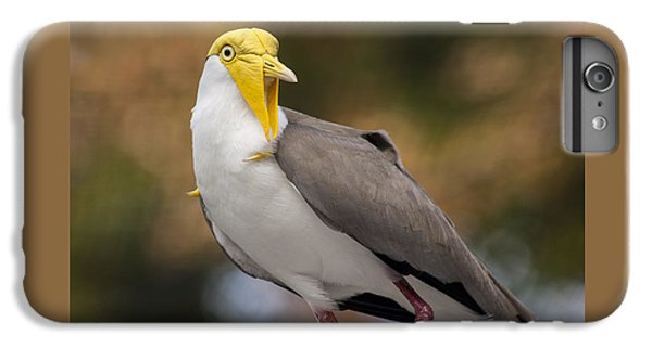 Masked Lapwing IPhone 6 Plus Case by Carolyn Marshall