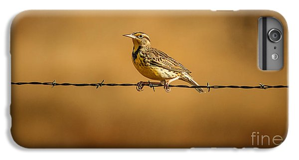 Meadowlark And Barbed Wire IPhone 6 Plus Case by Robert Frederick