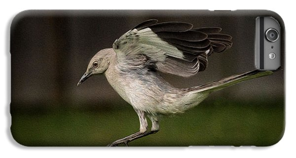 Mockingbird No. 2 IPhone 6 Plus Case by Rick Barnard