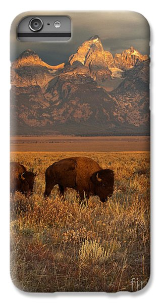 Morning Travels In Grand Teton IPhone 6 Plus Case by Sandra Bronstein