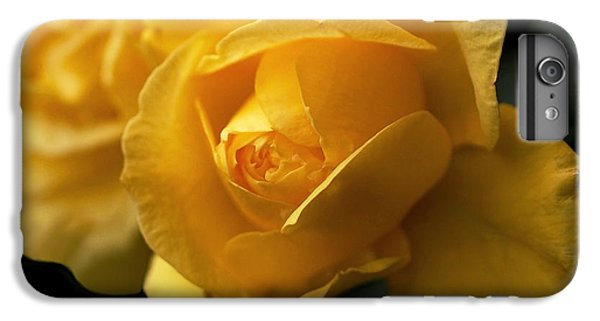 New Yellow Rose IPhone 6 Plus Case by Rona Black