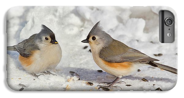 Nice Pair Of Titmice IPhone 6 Plus Case by John Absher