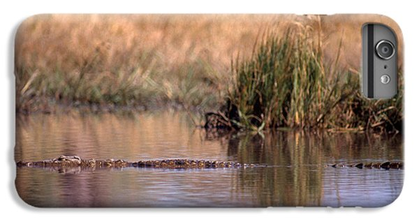 Nile Crocodile IPhone 6 Plus Case by Gregory G. Dimijian, M.D.