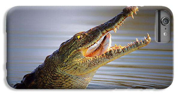 Nile Crocodile Swollowing Fish IPhone 6 Plus Case by Johan Swanepoel
